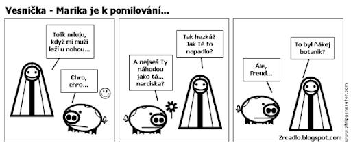 Komiks Vesnička - Marika je k pomilování