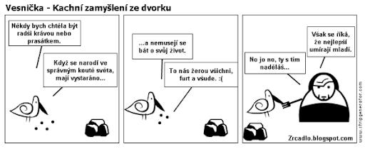 Komiks Vesnička - Kachní zamyšlení na dvorku.