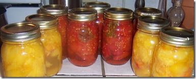 canned tomatoes 001