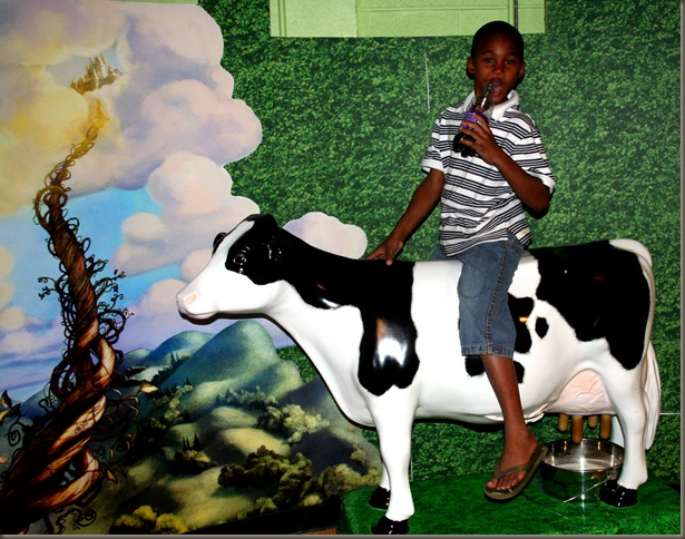 naji on cow