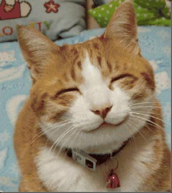 Momento positivo do dia - Lindos e fofos sorrisos (41)