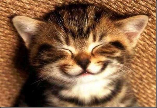 Momento positivo do dia - Lindos e fofos sorrisos (25)