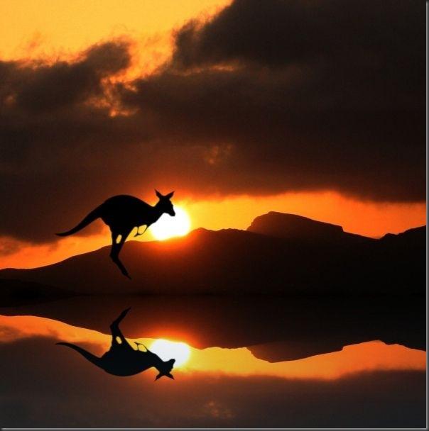 Belos exemplos de reflexões fotograticas (28)