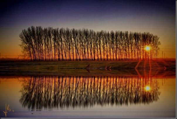 Belos exemplos de reflexões fotograticas (6)