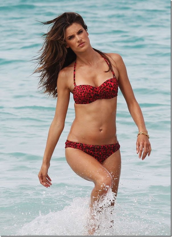 The Most Beautiful Girls Belas Fotos De Alessandra