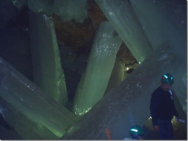 Palacio de Crystal (15)