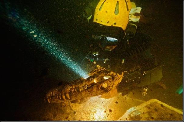 Lindas imagens de cavernas nas Bahamas (2)