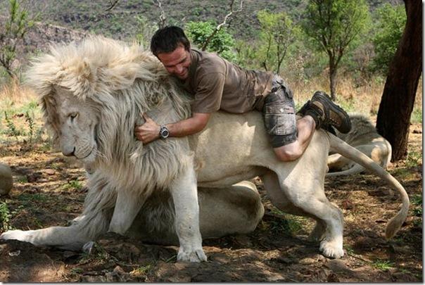 Kevin Richardson, O encantador de leões (9)