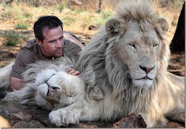 Kevin Richardson, O encantador de leões (6)
