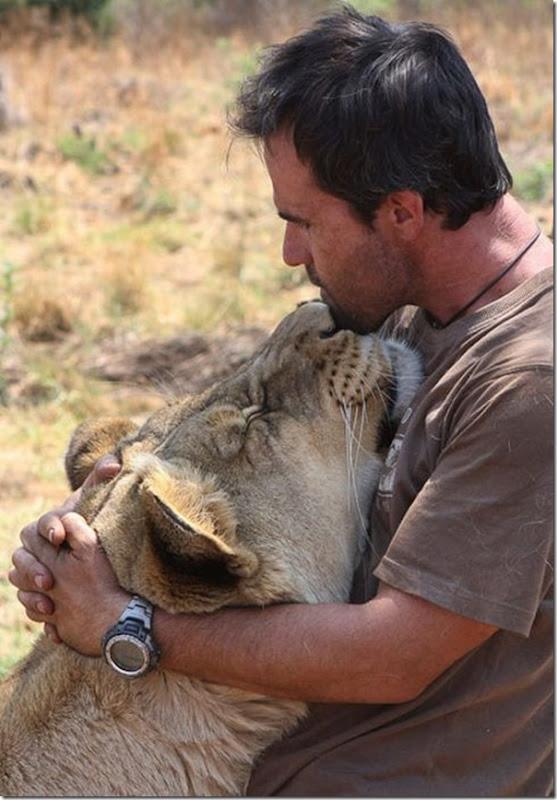 Kevin Richardson, O encantador de leões (5)