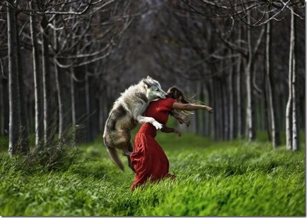 A verdade sobre a história de chapuzinho vermelho e o lobo mal