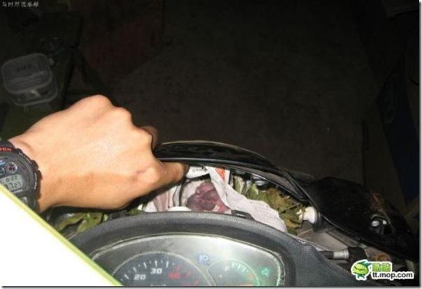 Uma surpresa na moto (2)