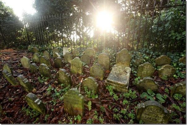 Cemitérios de animais de estimação em Londres (4)