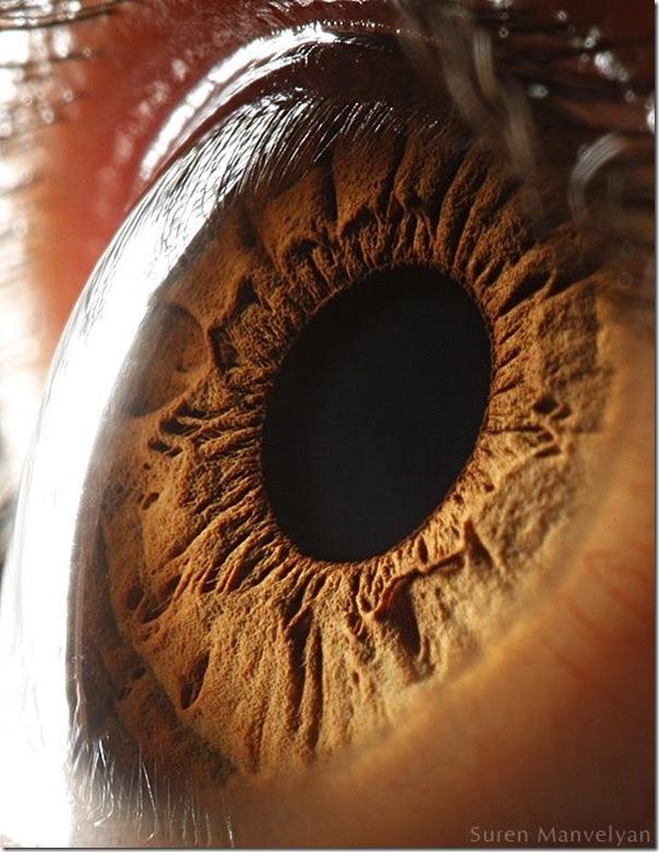 Fotos macro de olhos humanos (17)