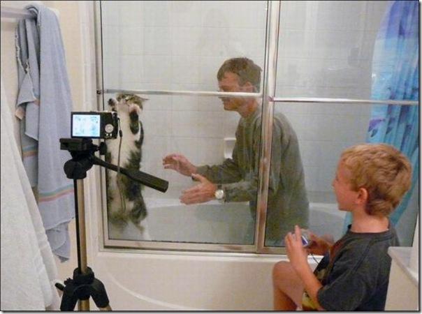 Esse gatinho adora um banho