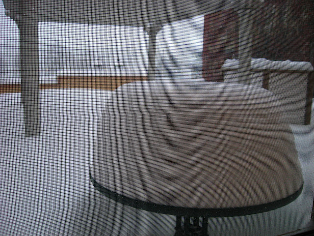 This is our patio table this afternoon. Refer to the picture in my entry, We woke up to this... to see what it looked like just yesterday.