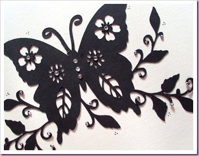 Butterfly card close up