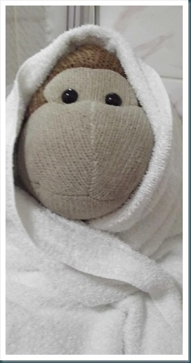 Monkey wrapped in towel