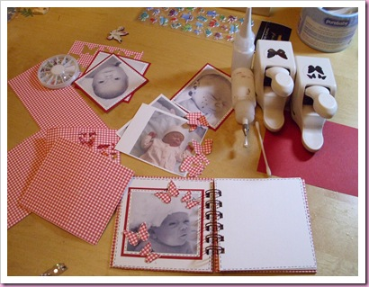 Gingham Mini Baby Book