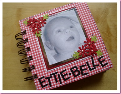 Cover of Mini Baby Book