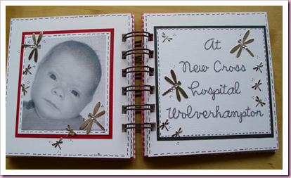 Gingham Mini babby Book 4