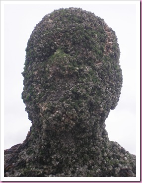 Antony gormley head