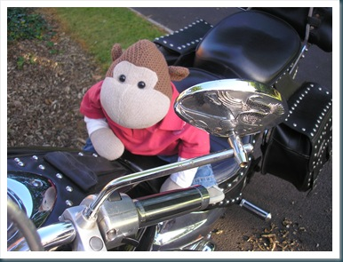 Monkey on a Motorbike 1