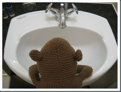 Monkey in Bathroom 2