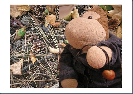 monkey and conkers
