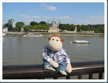 Monkey by the Thames
