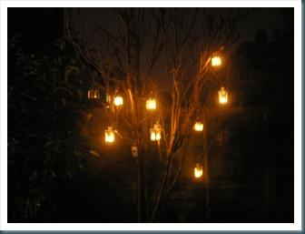 Tree Lanterns 1