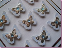 Close Up of Butterfly card