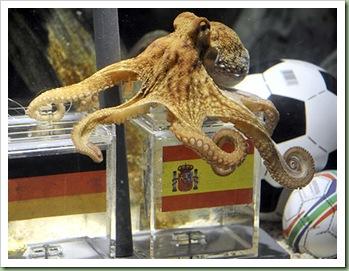 alg_octopus_paul