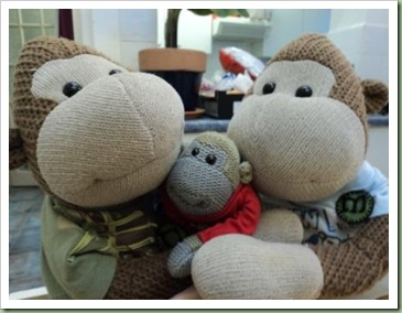 PG Tips Minkey Christmas 2010 a