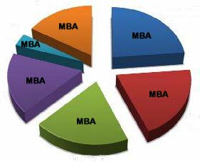 MBA Summer Placement