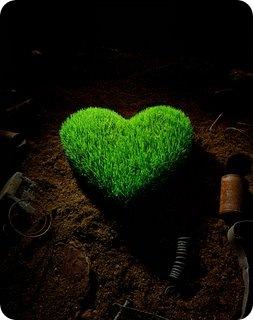 green-heart