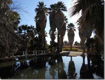 Aqua Caliente Park, Tucson, Az.
