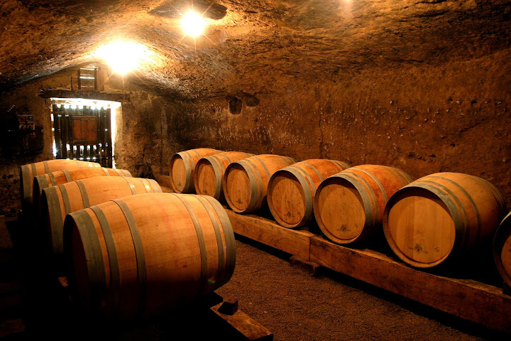 Visita Orvieto Wineries