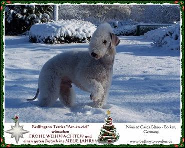 Weihnachten_2009D1