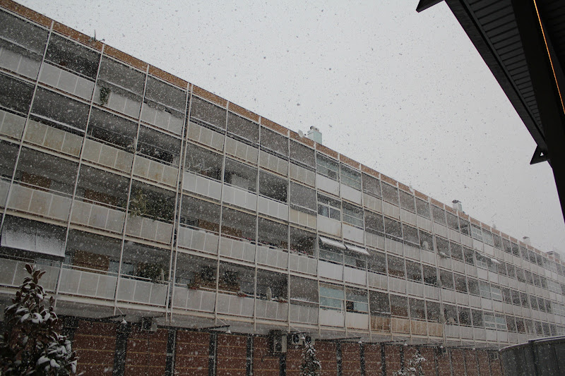 Vel nevat davant la façana II