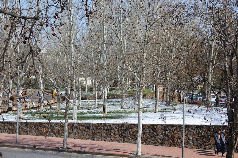 El dia després de la nevada: Parc Europa I