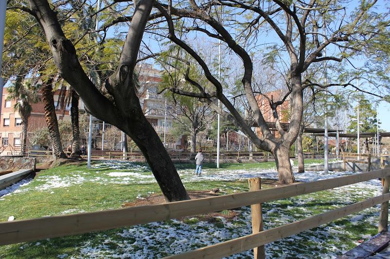 El dia després de la nevada: Plaça de la Vila de Gramenet III