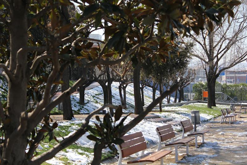El dia després de la nevada: Parc Europa V