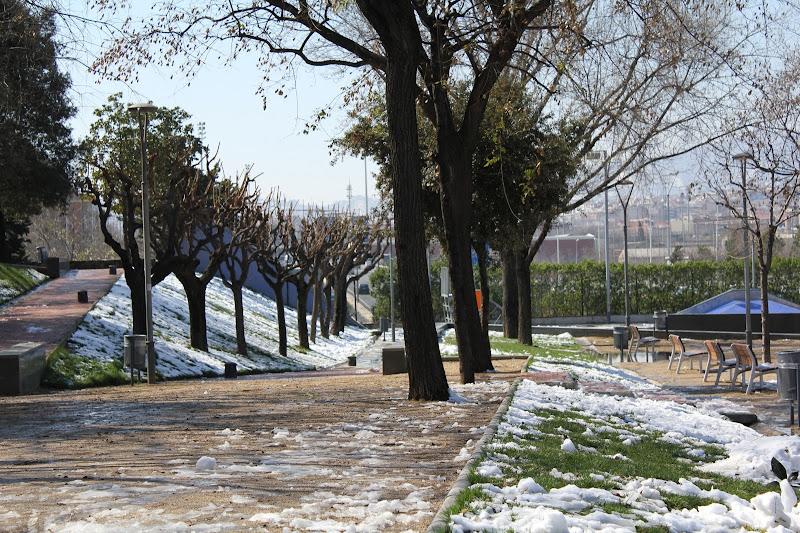 El dia després de la nevada: Parc Europa VI