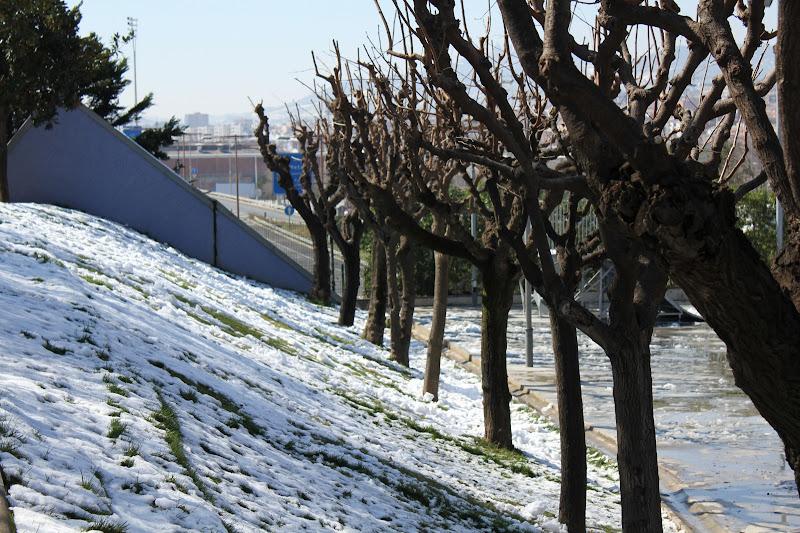El dia després de la nevada: Parc Europa VII