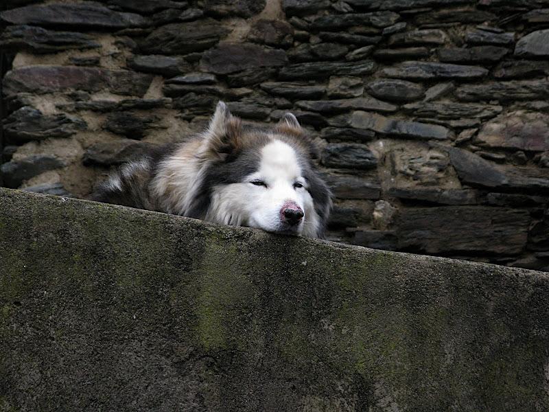 Descans mentre s'espera