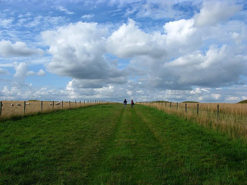 Camí d'Stonehenge