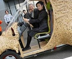 Japan Bamboo Car