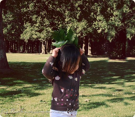 big leaf4