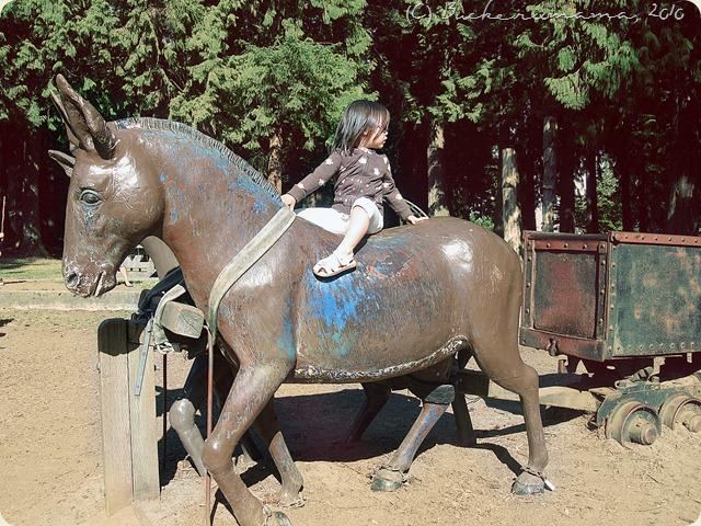 zoe on horseback